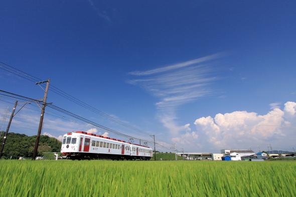 2008/8/9 和歌山電鐵貴志川線 岡崎前
