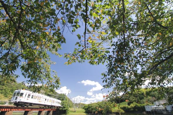 2014/9/13 和歌山電鐵貴志川線 大池遊園