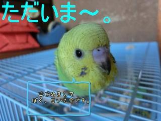 201404041136168ca.jpg