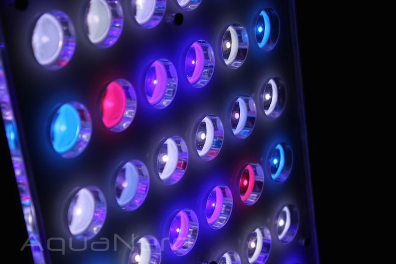 Orphek-Atlantik-Compact-LED-Colors.jpg