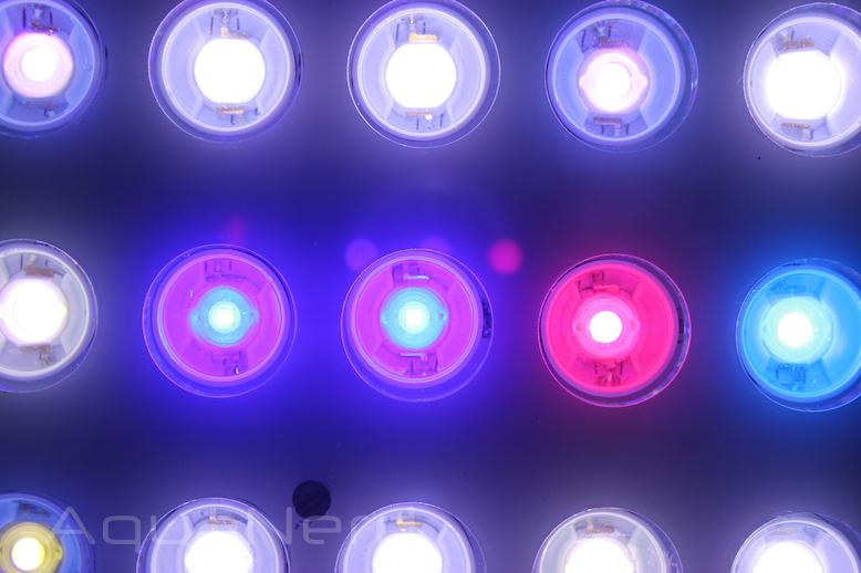 Orphek-Atlantik-Compact-LEDs.jpg