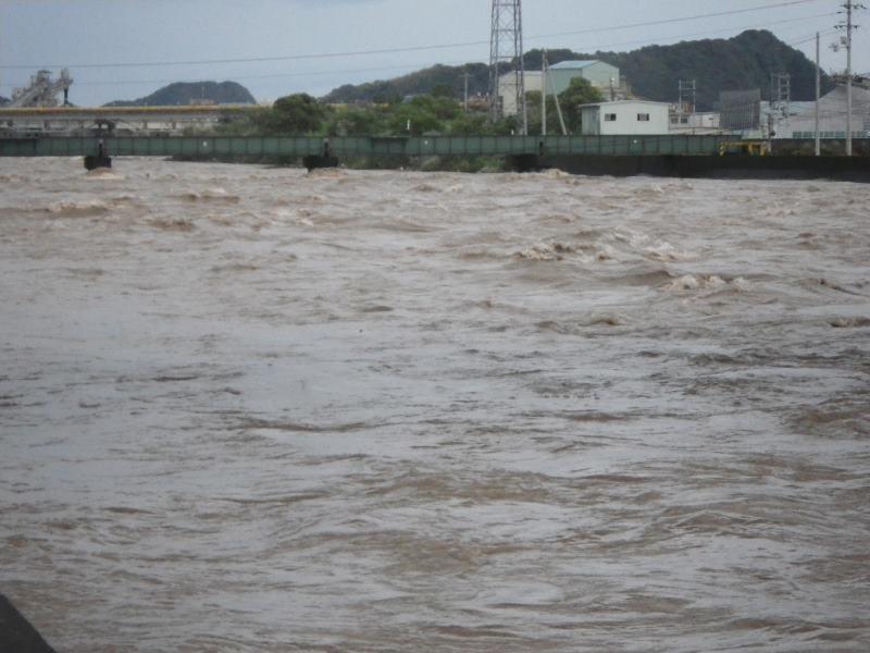 2014 8月10日 しんじょう川3