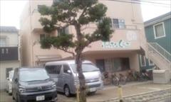 樹木140705_0853~01_R