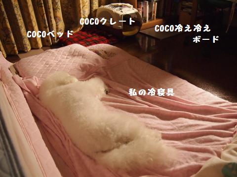私の冷寝具