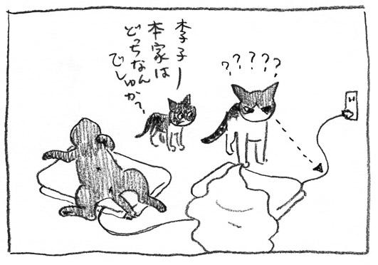 4_どっちだ