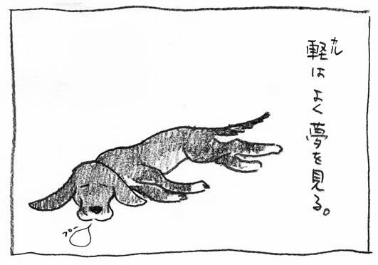 1_軽寝る