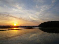 [写真]農園前から眺める日の出の様子