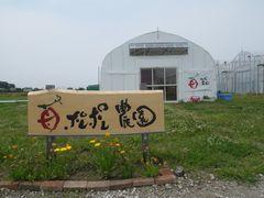 [写真]ポレポレ農園の記念撮影スポット(受付ハウス正面入口前の木製看板)