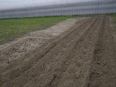 [写真]ベアハウスの西側で新たに耕耘中の三郎畑