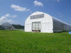 [写真]青い空と白い雲と緑の芝の間に建つ白い受付ハウス