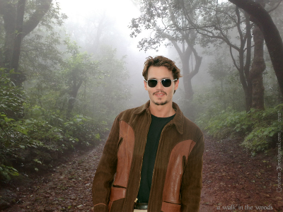 0914 a-walk-in-the-woods-johnny-depp-29328253-800-600