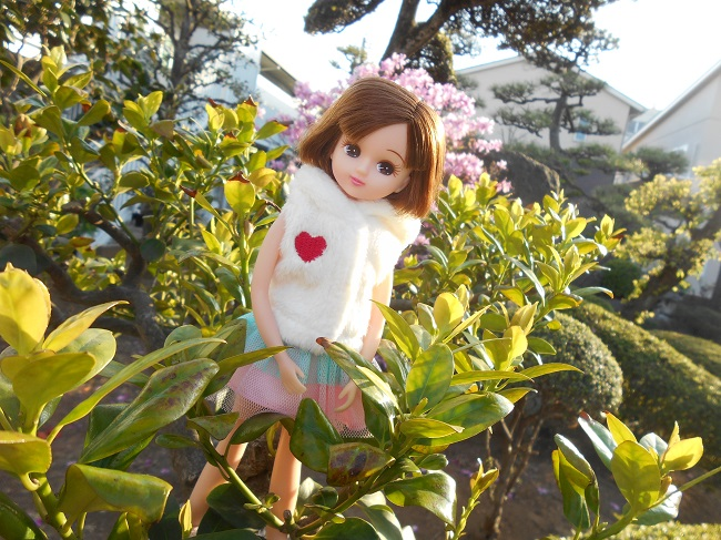 4 リカちゃんと庭の木