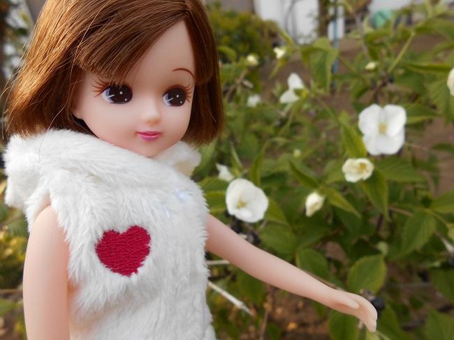 5 リカちゃんと庭の白い花