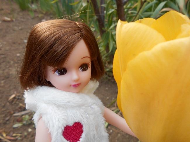 8 リカちゃんと黄色いチューリップ