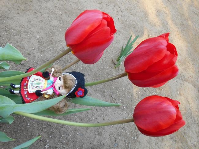 1 花と妖精