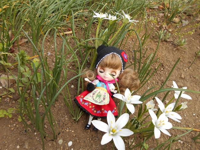 3 花と妖精