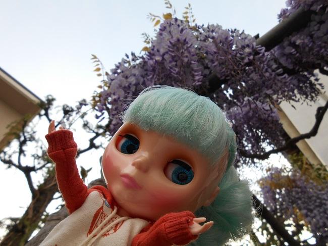 2 リサと藤の花