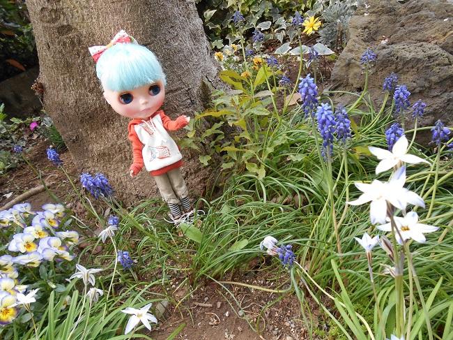 9リサと小さな庭
