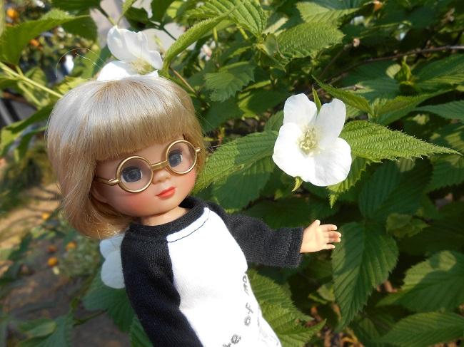7 白い花
