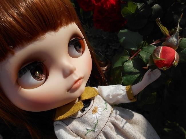 2 ナナちゃんとバラの蕾