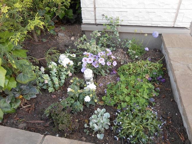 27 another garden