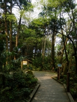 沢スギ自然館
