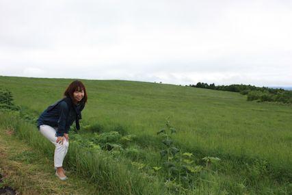 洞爺湖草原とマキ