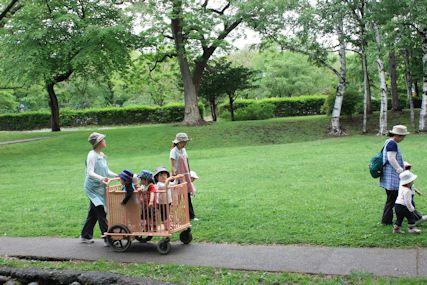 北海道大学園児散歩