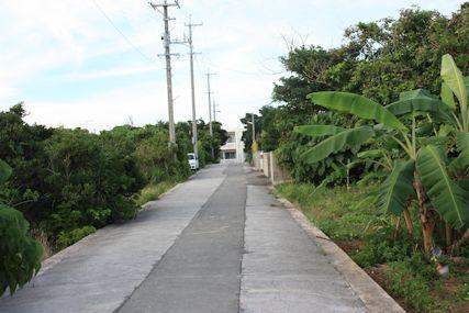 sawaの前の道