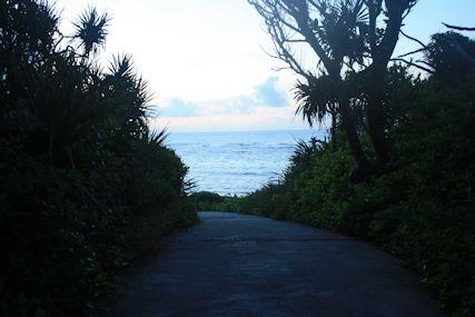 ぴざ浜への道
