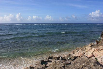 ぴざ浜の海