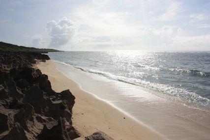 ぴざ浜海岸線