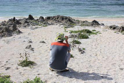たち浜hitoshi