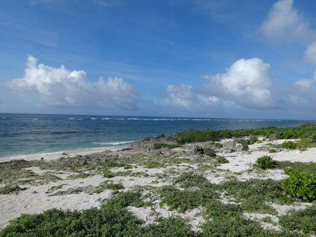 たち浜海岸