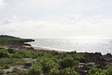 たち浜海岸線