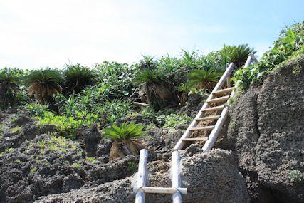 ロマンスロードウディ浜階段