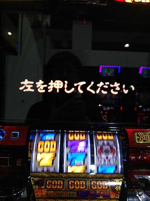 DSC_0515[1]