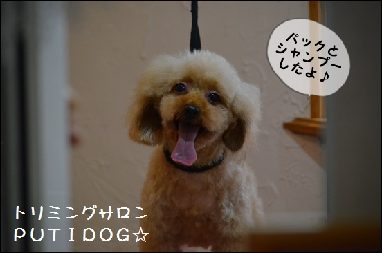 20140811_1760.jpg