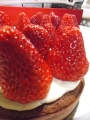 fraises2.jpg