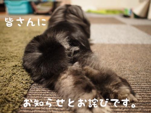 B5044778.jpg