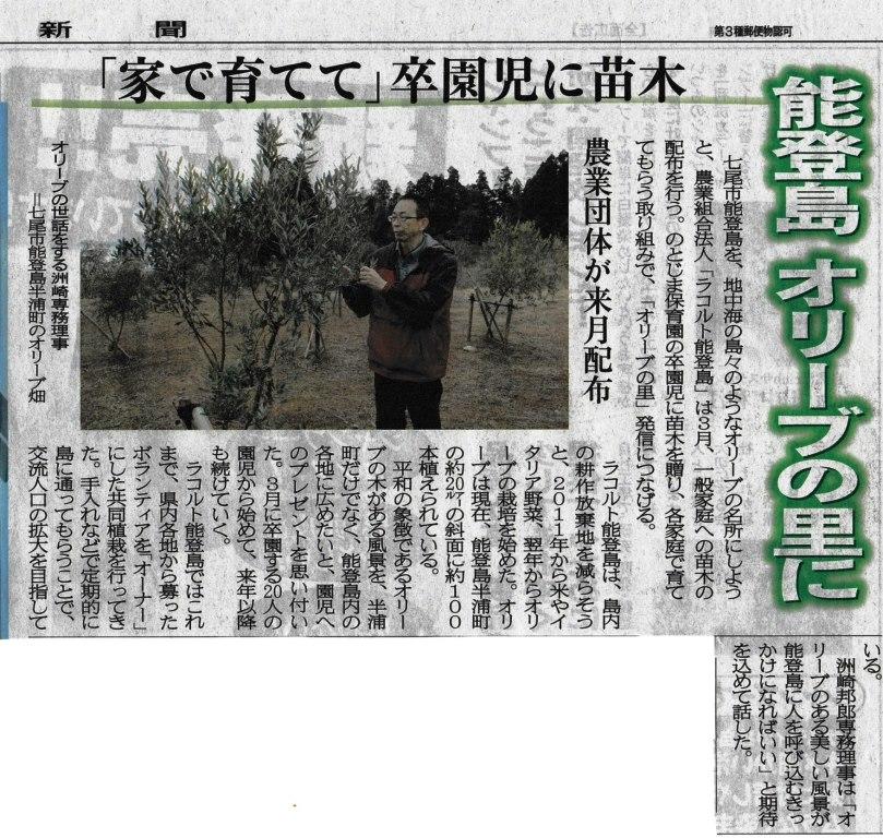 オリーブの里☆北國新聞20140204