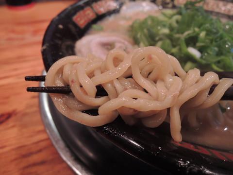 Wスープラーメン(豚骨6:魚介4)の麺