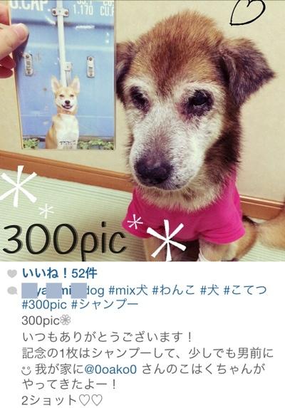 fc2blog_20140908121058488.jpg