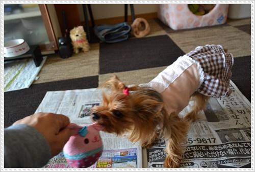 散歩と新聞DSC_0245