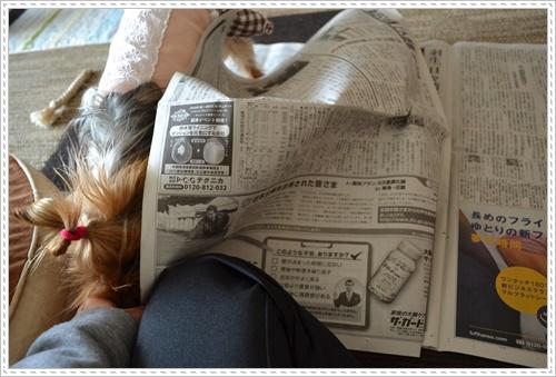 散歩と新聞DSC_0247