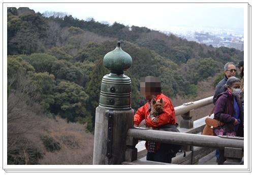 京都2DSC_0384