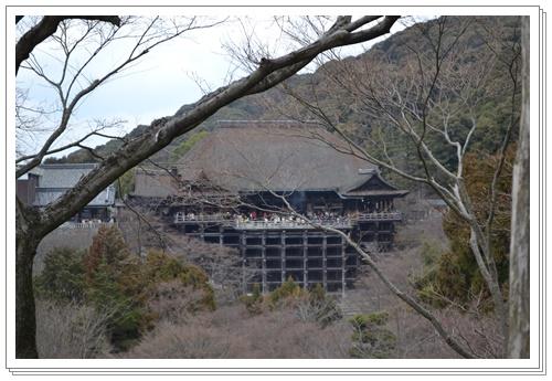 京都2DSC_0389