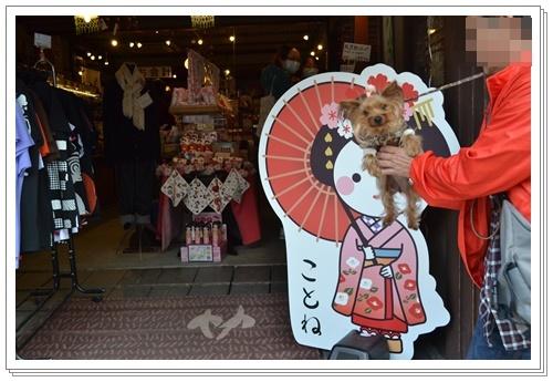 京都2DSC_0392