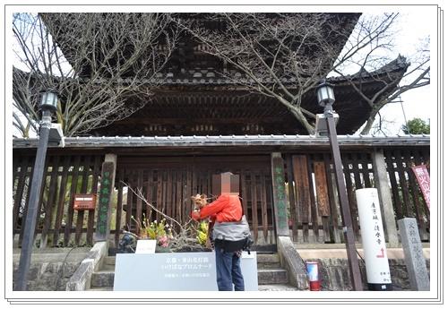 京都2DSC_0394