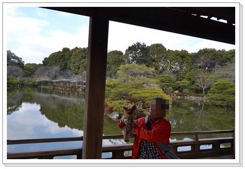 京都2DSC_0409